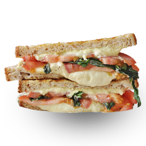 cheese-veg-sandwich